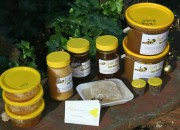 Terry Winchester produces yummy honey thanks to his bees